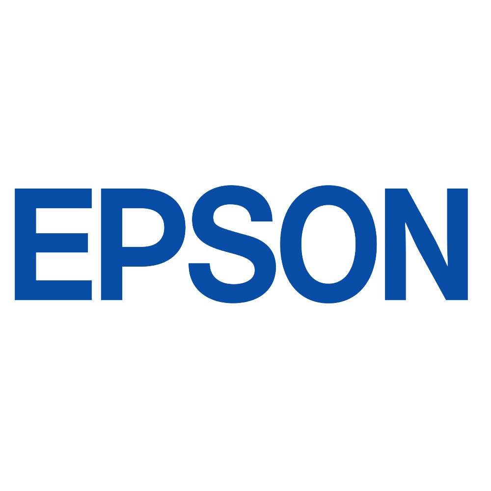 Epson C13T13014012 Black  Inkjet Cartridge  T01301